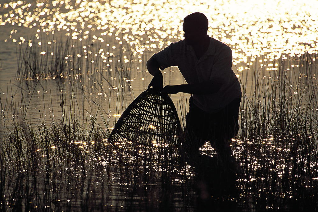 Fishing at Kosi Mouth still follows traditional methods