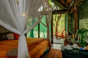 Kosi Forest Room