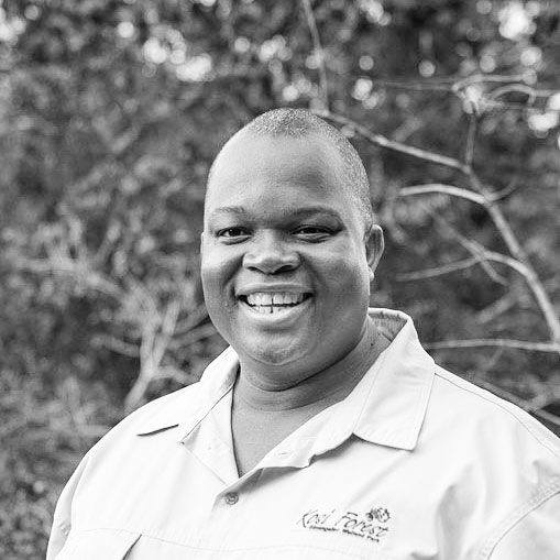 Blessing Mngomezulu