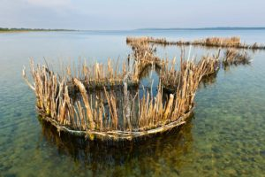FAMOUS FISH TRAPS OF KOSI BAY