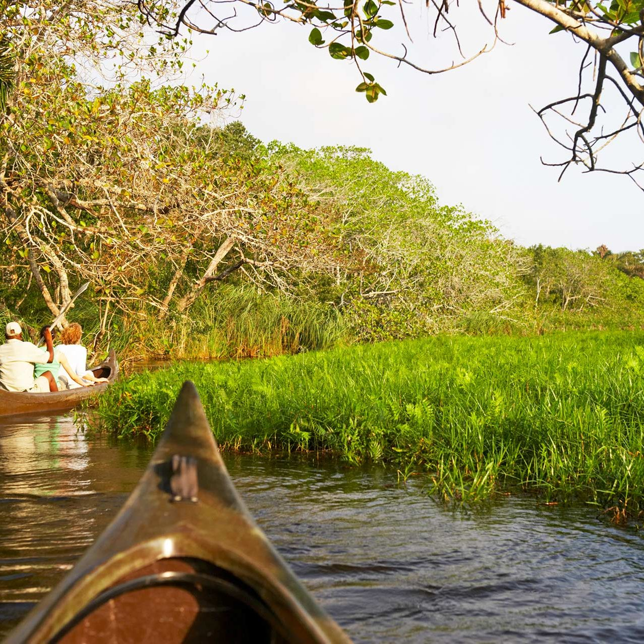 Canoeing at Kosi Forest Lodge