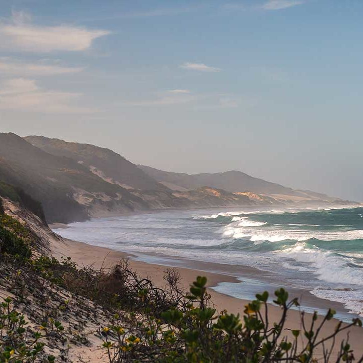 TBL-Dunes-and-Ocean