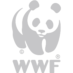 https://www.kosiforestlodge.co.za/wp-content/uploads/sites/15/2018/02/WWF-1.png